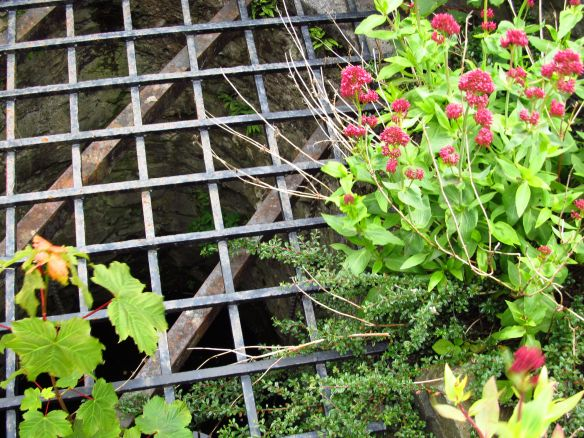 flowers on a grate at Scotland's Dunvegan Castle