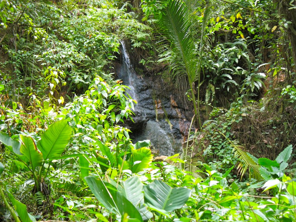 Diamond Falls in Soufriere, St. Lucia